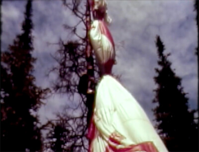 John Proctor removes balloon wreckage from pine tree, north rim of the Grand Canyon, from the Tracy Barnes documentary.
